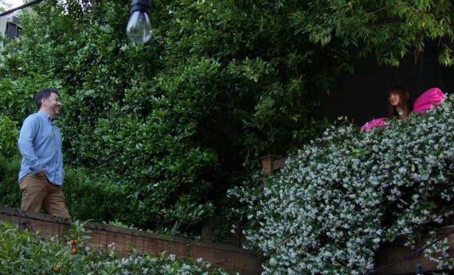 Jimmy Kimmel Interviews Neighbor Dakota Johnson Over Fence